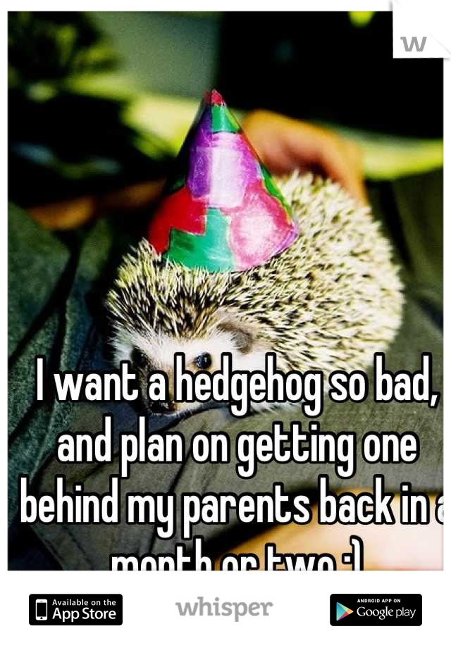I want a hedgehog so bad, and plan on getting one behind my parents back in a month or two :)