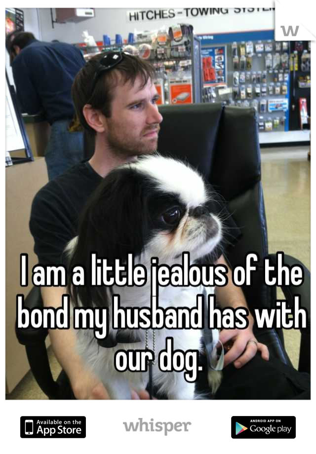 I am a little jealous of the bond my husband has with our dog.