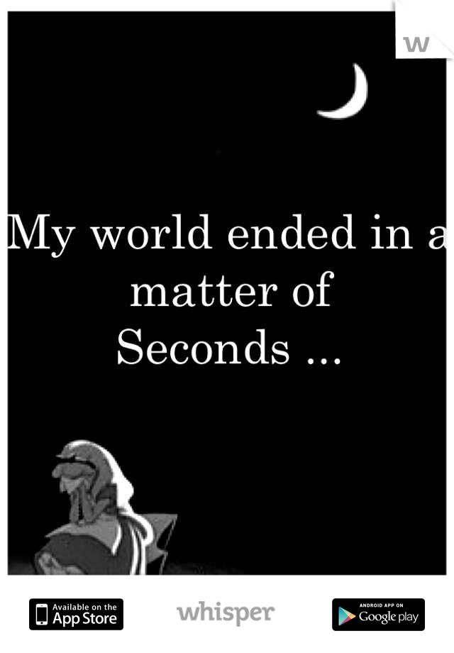 My world ended in a matter of Seconds ...