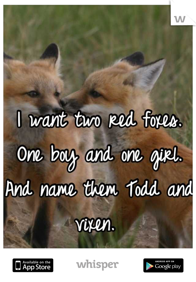 I want two red foxes.  One boy and one girl. And name them Todd and vixen.
