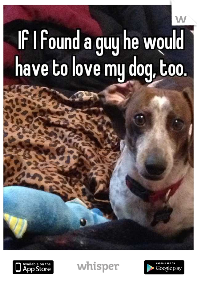 If I found a guy he would have to love my dog, too.