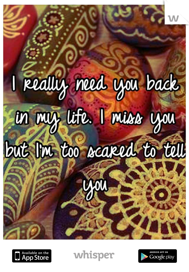 I really need you back in my life. I miss you but I'm too scared to tell you
