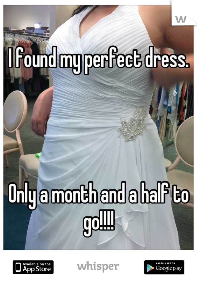 I found my perfect dress.      Only a month and a half to go!!!!