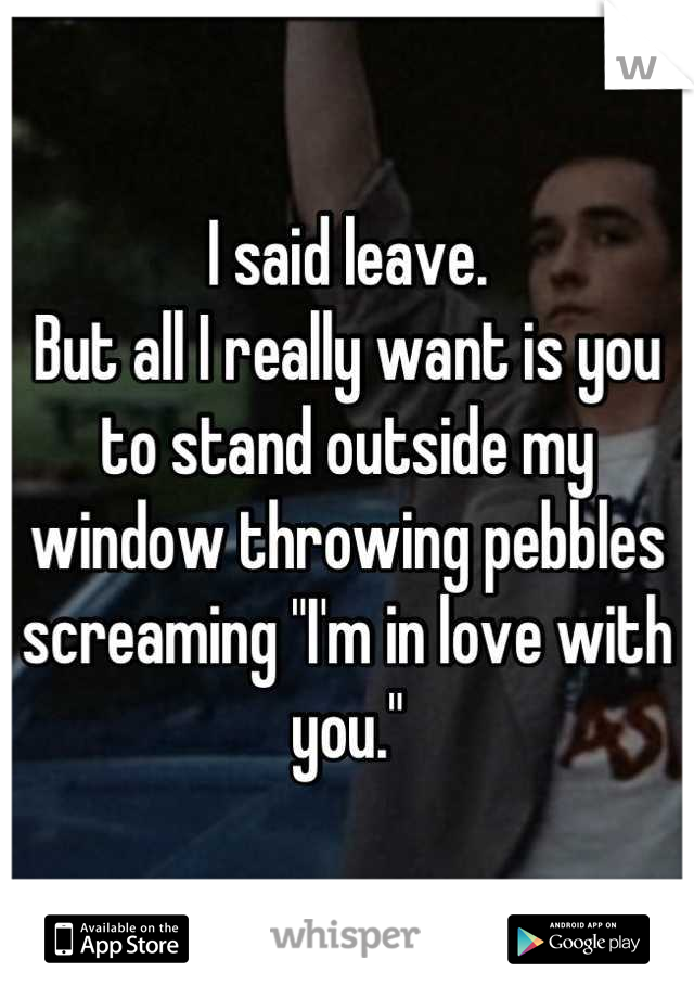 "I said leave. But all I really want is you to stand outside my window throwing pebbles screaming ""I'm in love with you."""