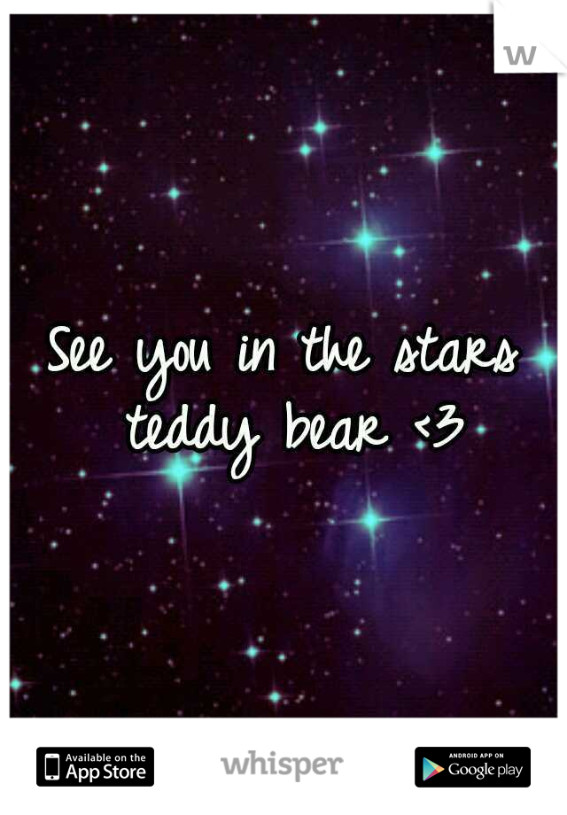 See you in the stars teddy bear <3