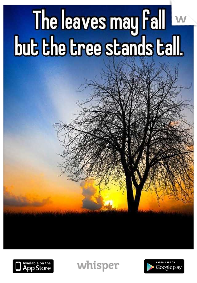The leaves may fall but the tree stands tall.