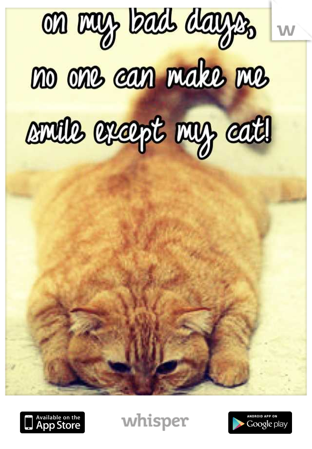 on my bad days,  no one can make me smile except my cat!