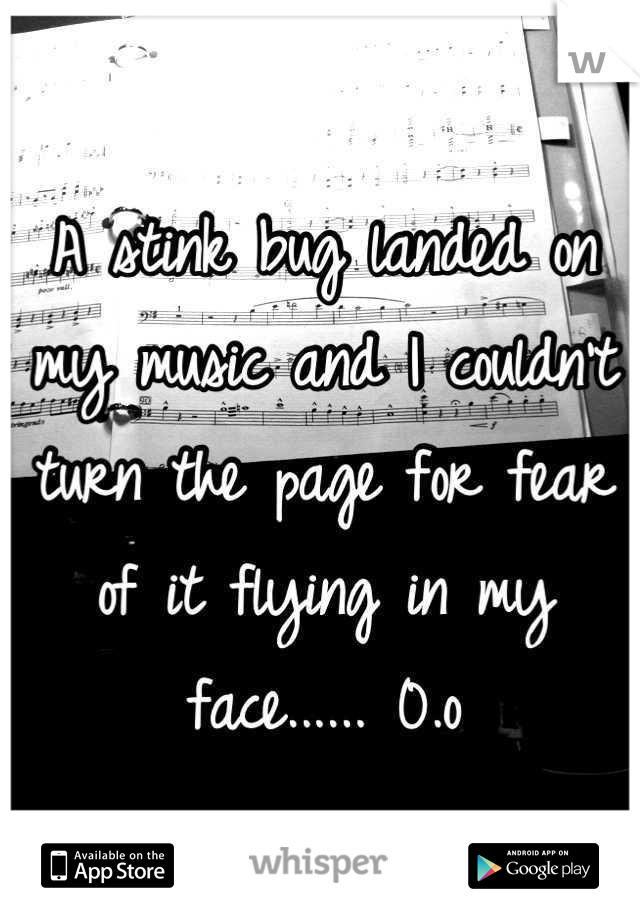 A stink bug landed on my music and I couldn't turn the page for fear of it flying in my face...... 0.o