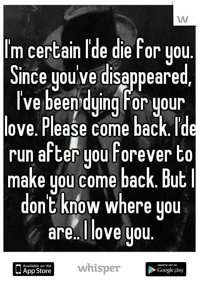 I'm certain I'de die for you. Since you've disappeared, I've been dying for your love. Please come back. I'de run after you forever to make you come back. But I don't know where you are.. I love you.