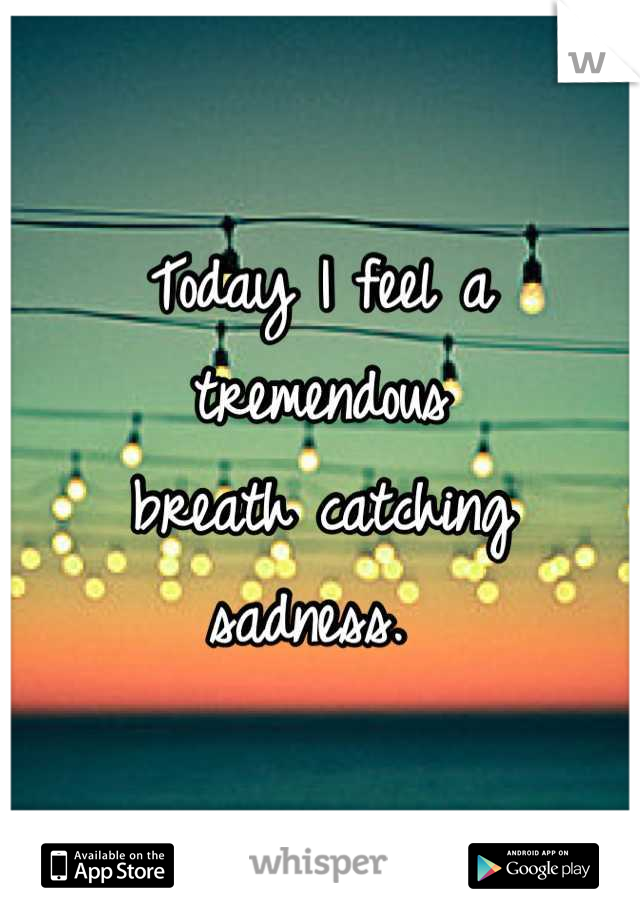 Today I feel a tremendous  breath catching  sadness.