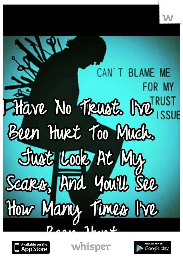 I Have No Trust. I've Been Hurt Too Much. Just Look At My Scars, And You'll See How Many Times I've Been Hurt