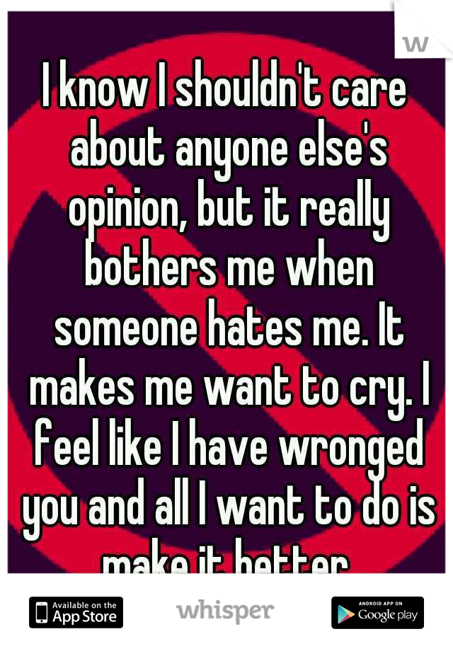 I know I shouldn't care about anyone else's opinion, but it really bothers me when someone hates me. It makes me want to cry. I feel like I have wronged you and all I want to do is make it better.