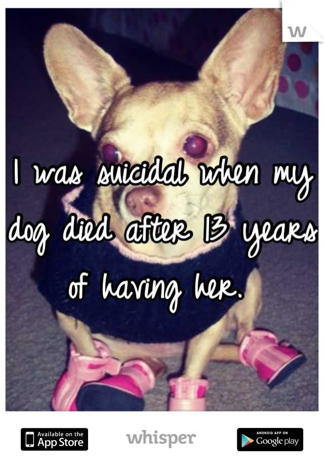 I was suicidal when my dog died after 13 years of having her.