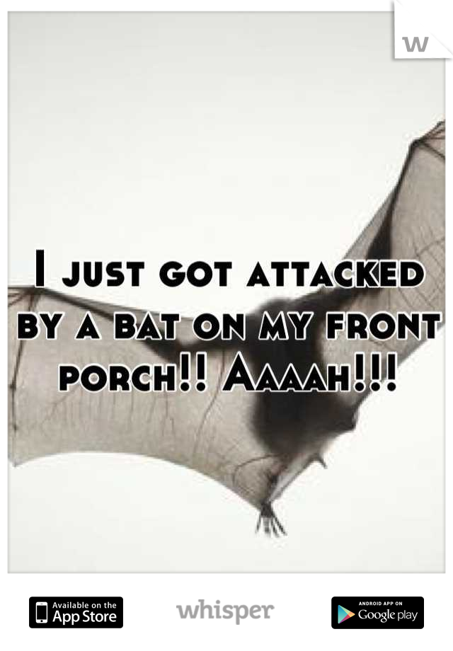 I just got attacked by a bat on my front porch!! Aaaah!!!