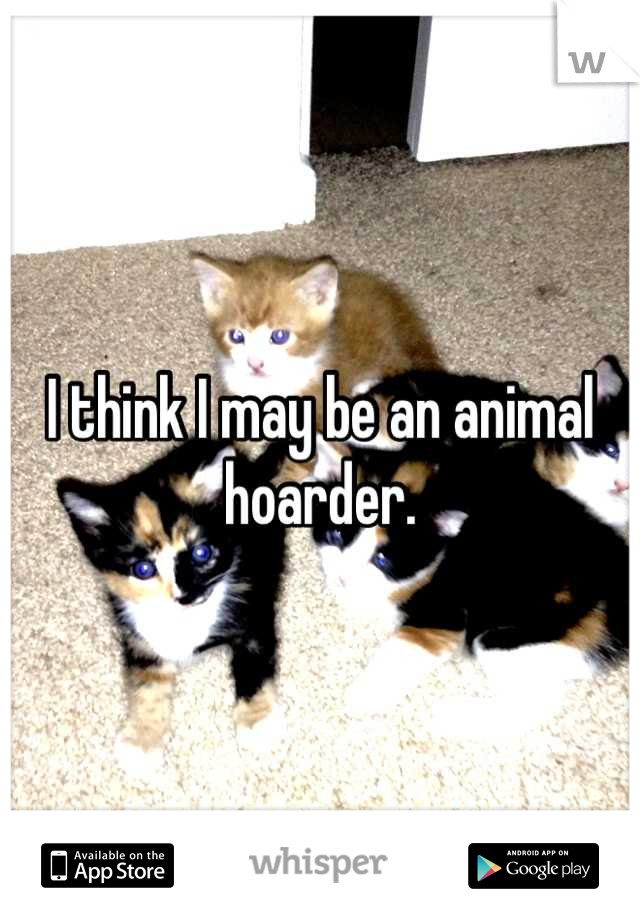 I think I may be an animal hoarder.