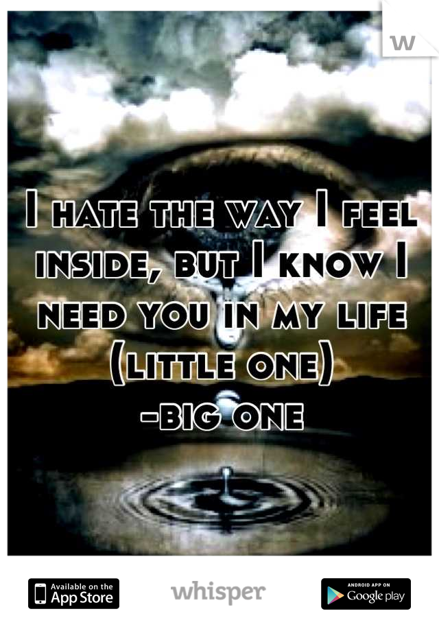 I hate the way I feel inside, but I know I need you in my life (little one) -big one