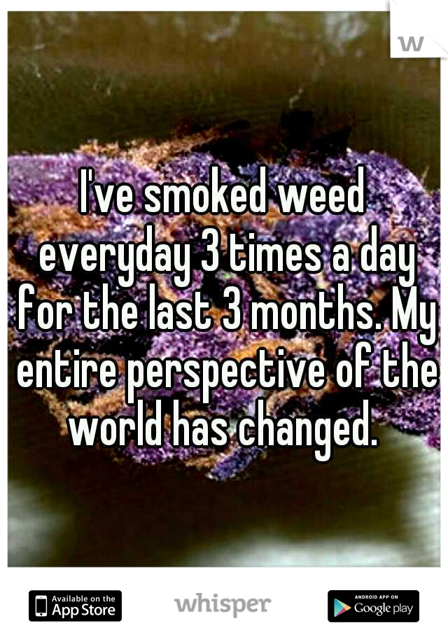 I've smoked weed everyday 3 times a day for the last 3 months. My entire perspective of the world has changed.