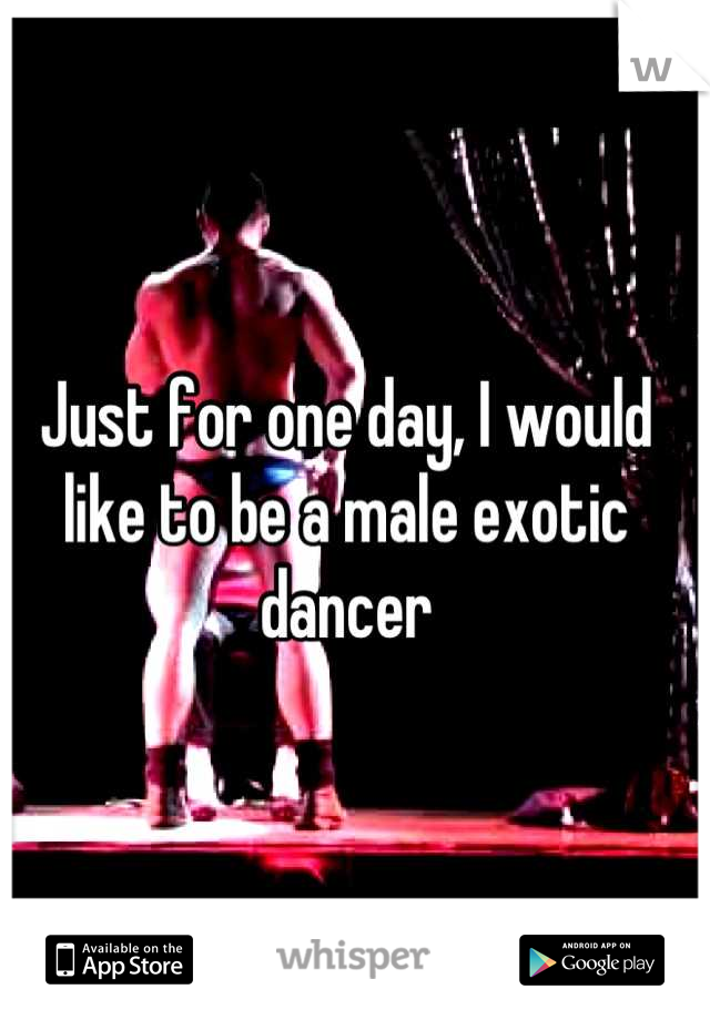 Just for one day, I would like to be a male exotic dancer