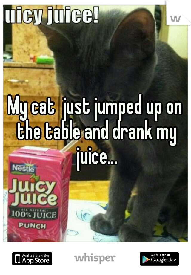 My cat  just jumped up on the table and drank my juice...