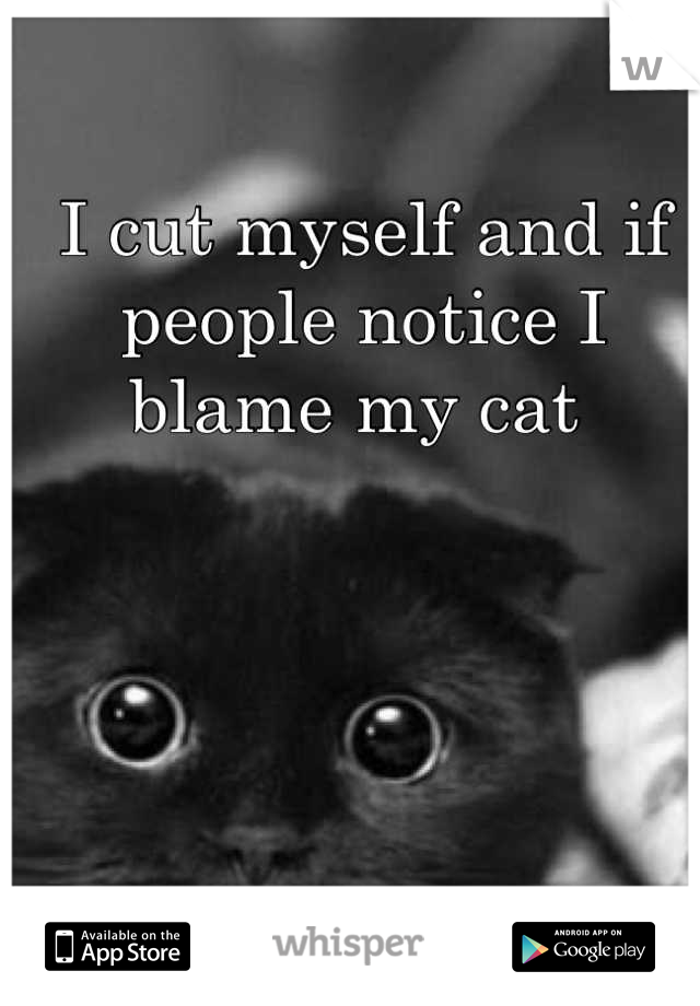 I cut myself and if people notice I blame my cat