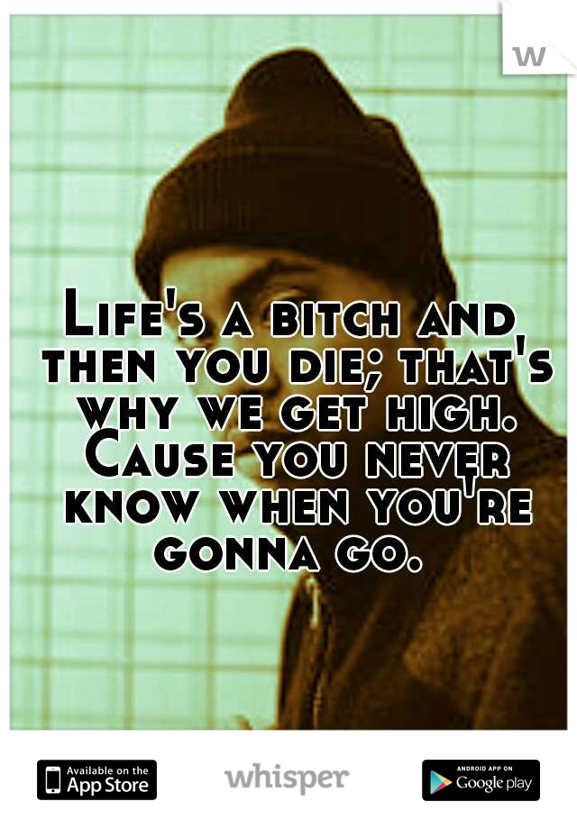 Life's a bitch and then you die; that's why we get high. Cause you never know when you're gonna go.