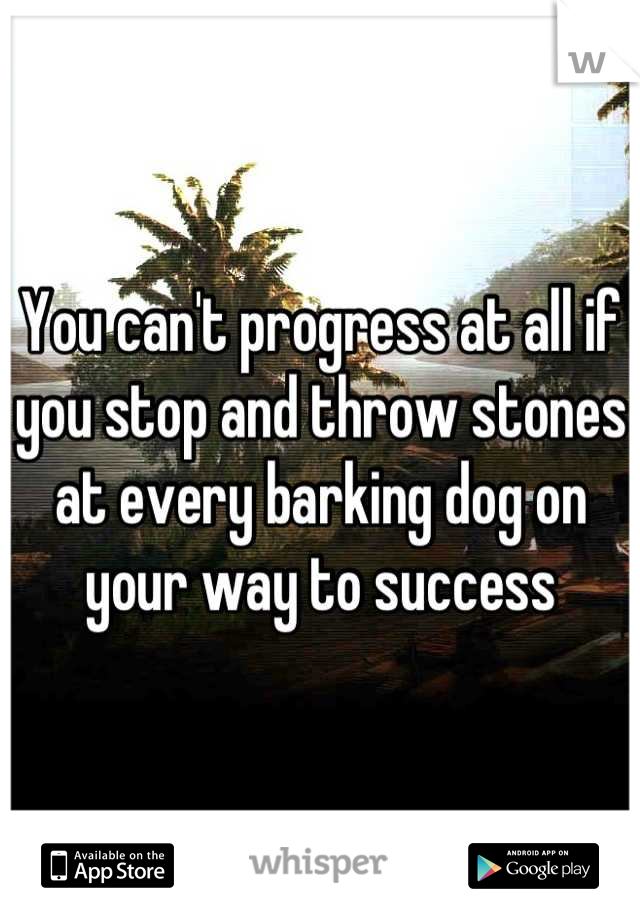 You can't progress at all if you stop and throw stones at every barking dog on your way to success