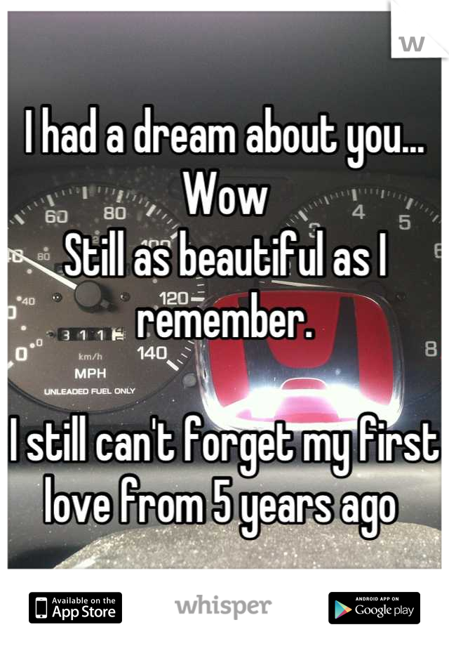 I had a dream about you... Wow Still as beautiful as I remember.   I still can't forget my first love from 5 years ago