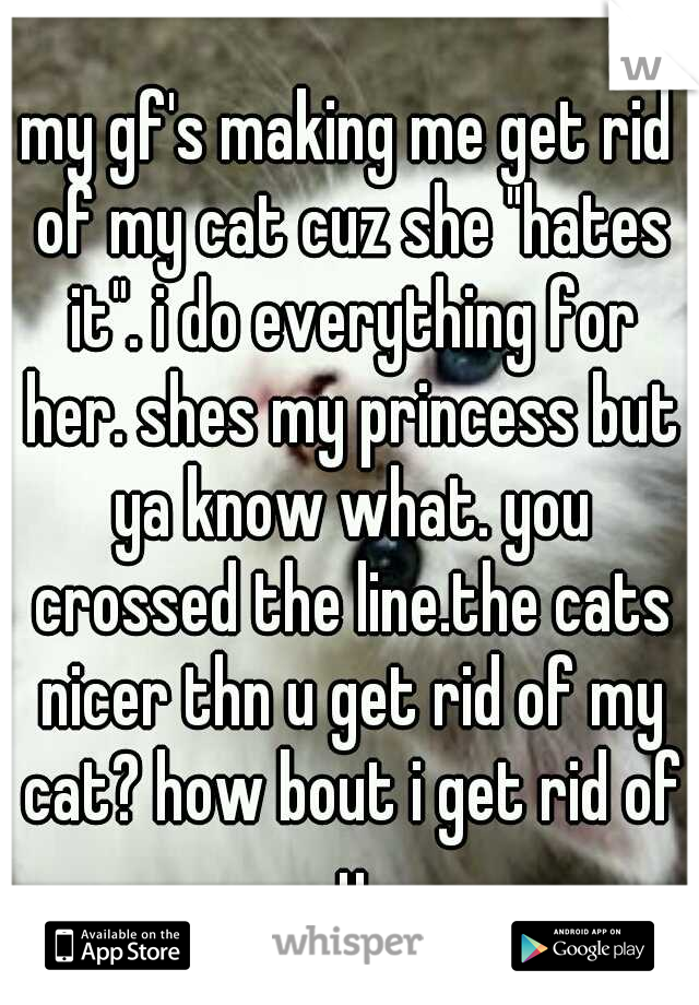 """my gf's making me get rid of my cat cuz she """"hates it"""". i do everything for her. shes my princess but ya know what. you crossed the line.the cats nicer thn u get rid of my cat? how bout i get rid of u"""