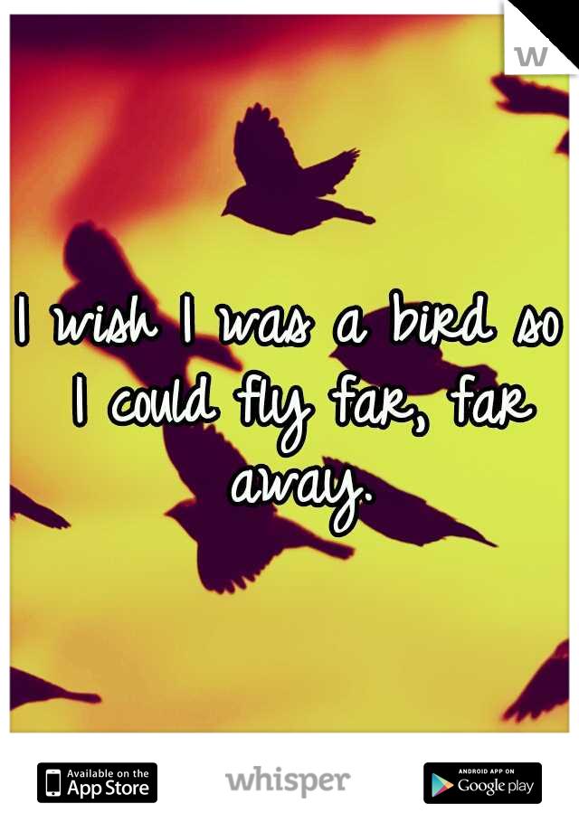 I wish I was a bird so I could fly far, far away.