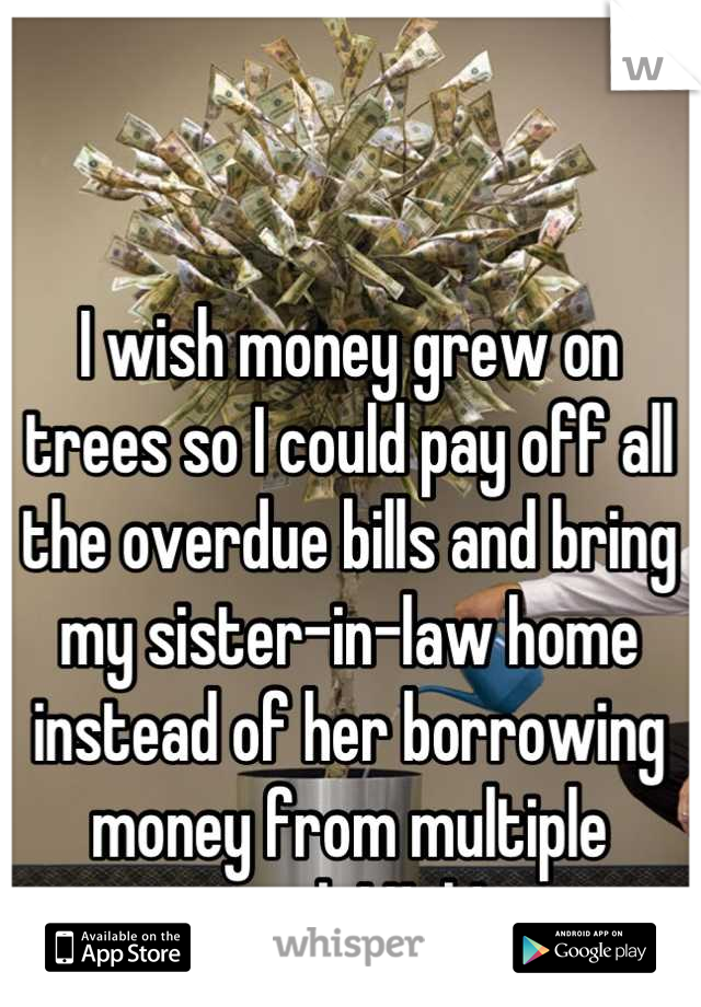 I wish money grew on trees so I could pay off all the overdue bills and bring my sister-in-law home instead of her borrowing money from multiple people! Ugh!