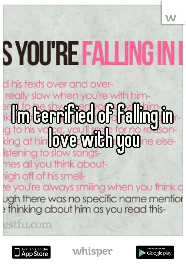 I'm terrified of falling in love with you