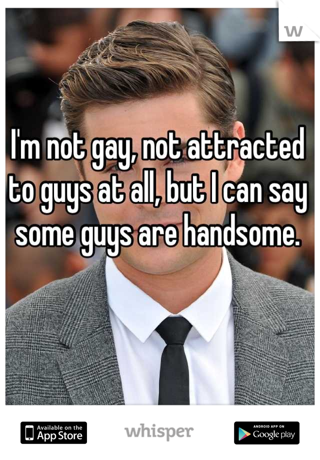 I'm not gay, not attracted to guys at all, but I can say some guys are handsome.