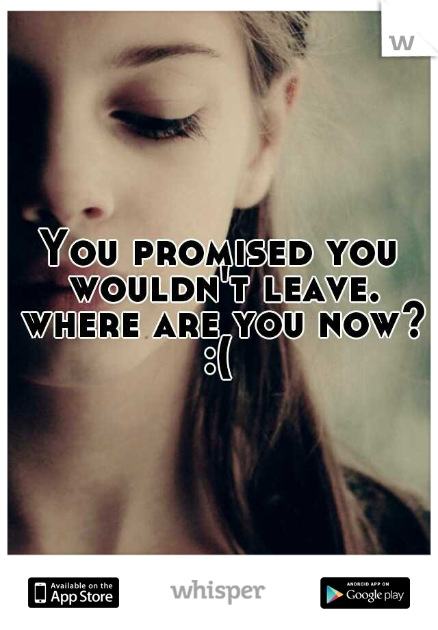 You promised you wouldn't leave. where are you now? :(