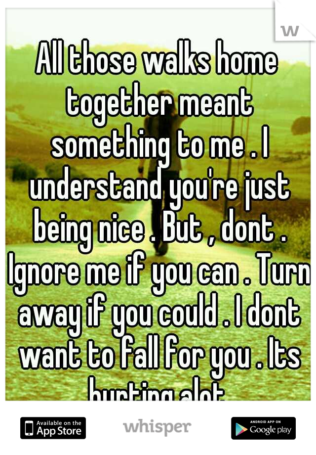 All those walks home together meant something to me . I understand you're just being nice . But , dont . Ignore me if you can . Turn away if you could . I dont want to fall for you . Its hurting alot.