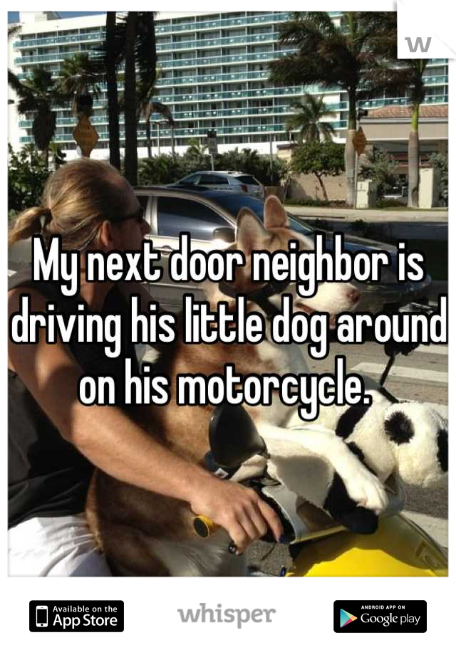 My next door neighbor is driving his little dog around on his motorcycle.