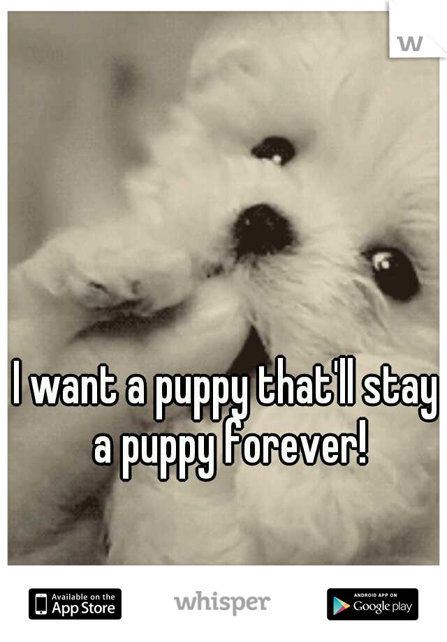 I want a puppy that'll stay a puppy forever!