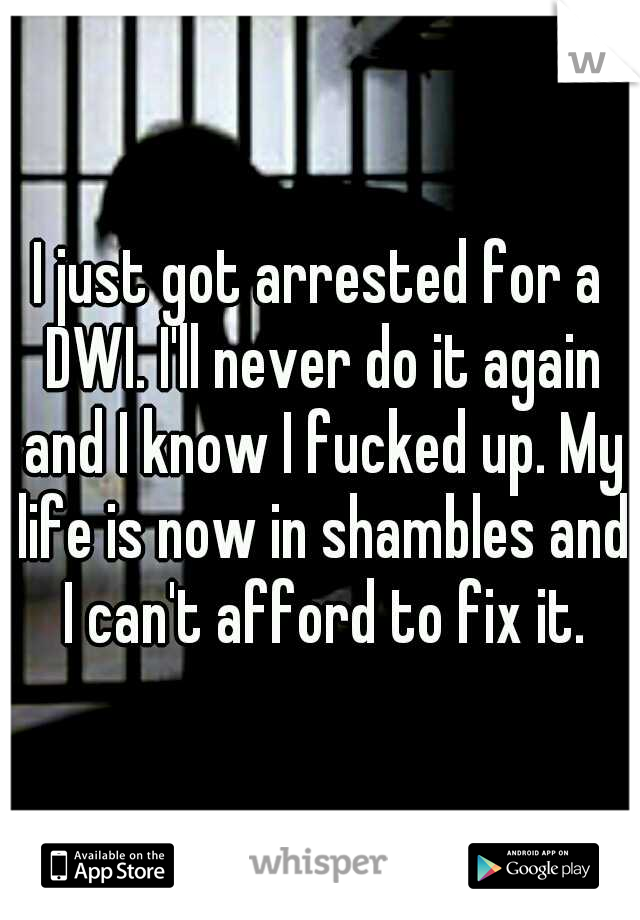 I just got arrested for a DWI. I'll never do it again and I know I fucked up. My life is now in shambles and I can't afford to fix it.