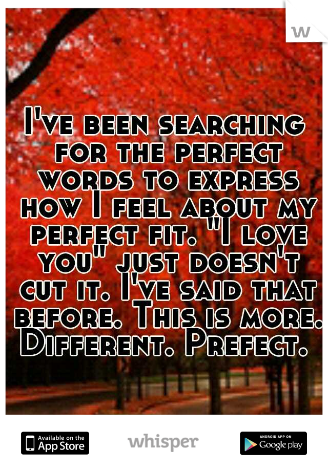 """I've been searching for the perfect words to express how I feel about my perfect fit. """"I love you"""" just doesn't cut it. I've said that before. This is more. Different. Prefect."""