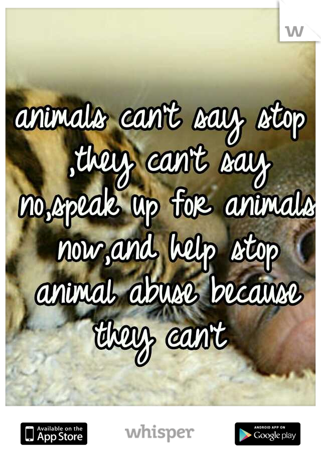 animals can't say stop ,they can't say no,speak up for animals now,and help stop animal abuse because they can't