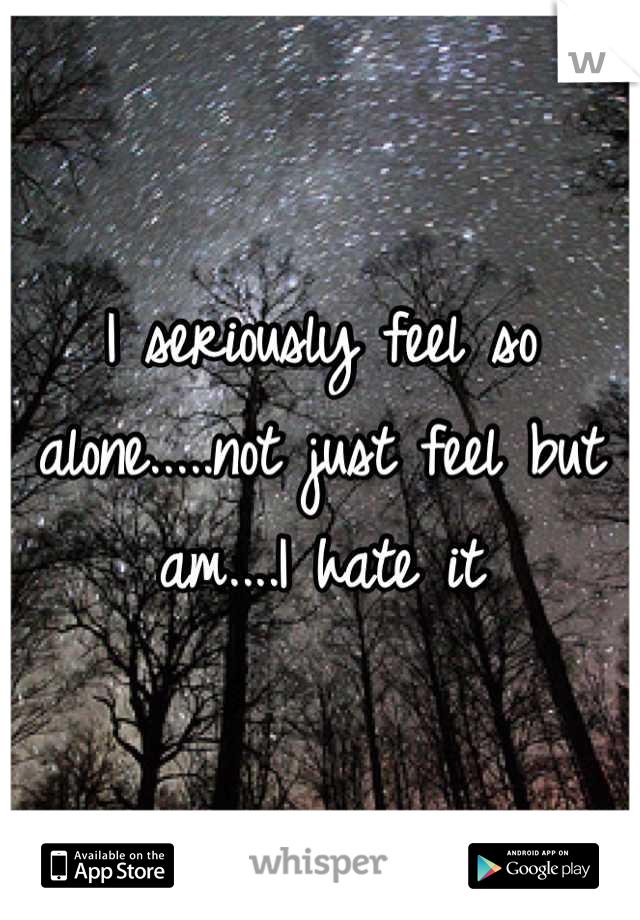 I seriously feel so alone.....not just feel but  am....I hate it