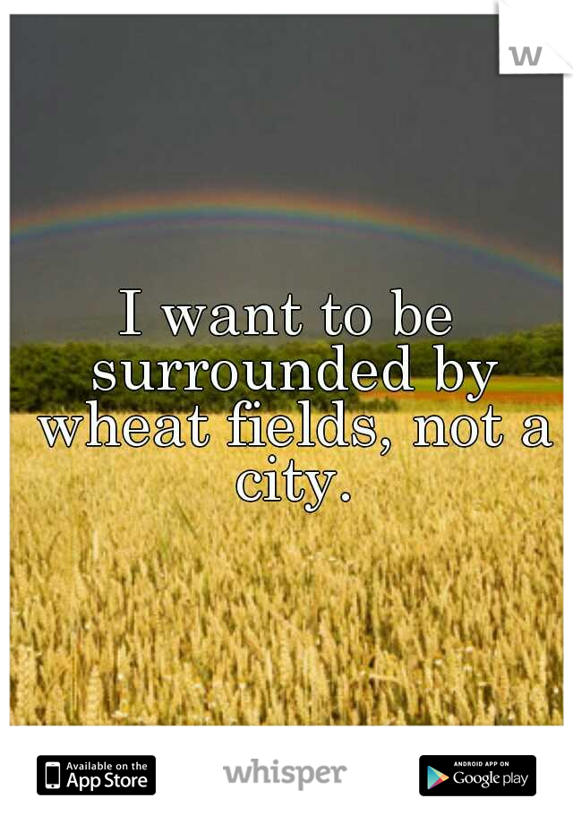 I want to be surrounded by wheat fields, not a city.