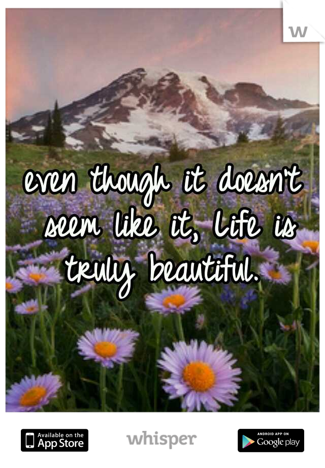 even though it doesn't seem like it, Life is truly beautiful.