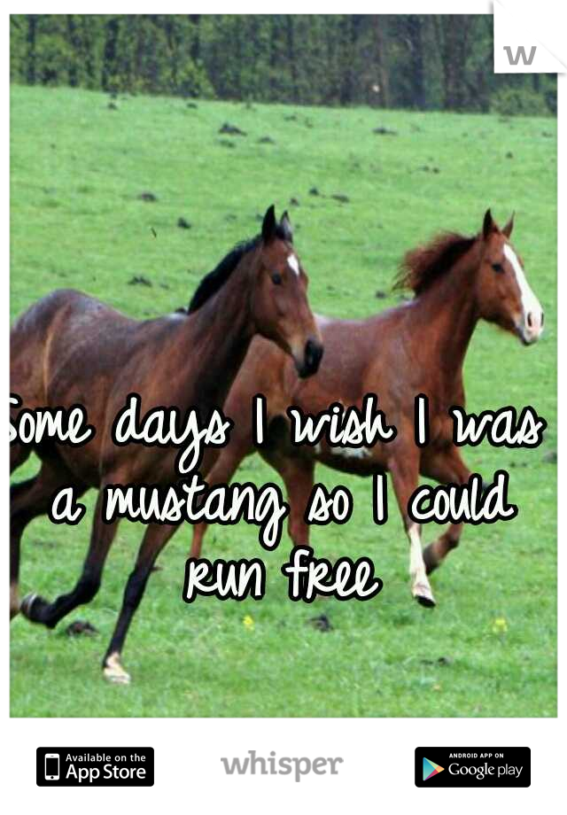 Some days I wish I was a mustang so I could run free