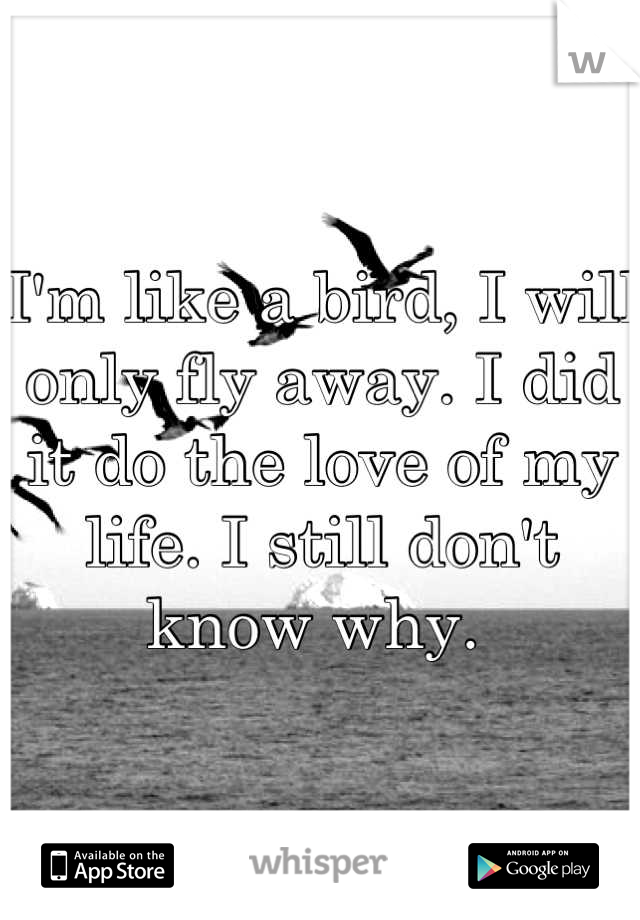 I'm like a bird, I will only fly away. I did it do the love of my life. I still don't know why.
