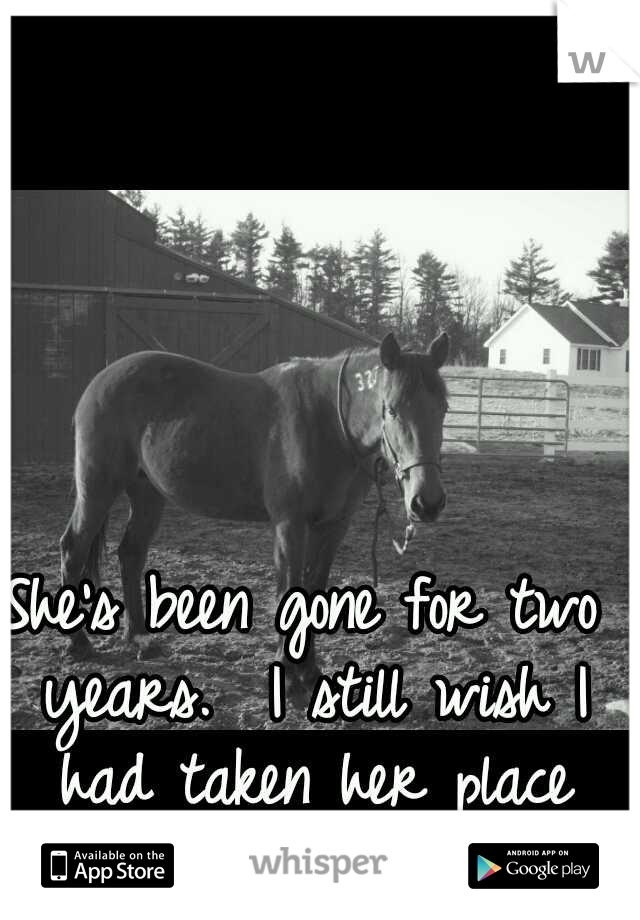 She's been gone for two years.  I still wish I had taken her place and died instead.