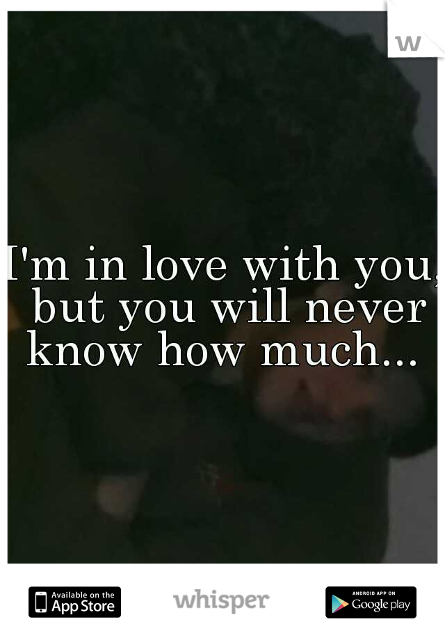 I'm in love with you, but you will never know how much...