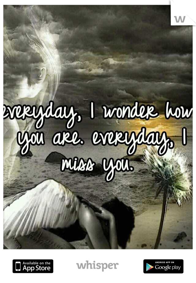 everyday, I wonder how you are. everyday, I miss you.