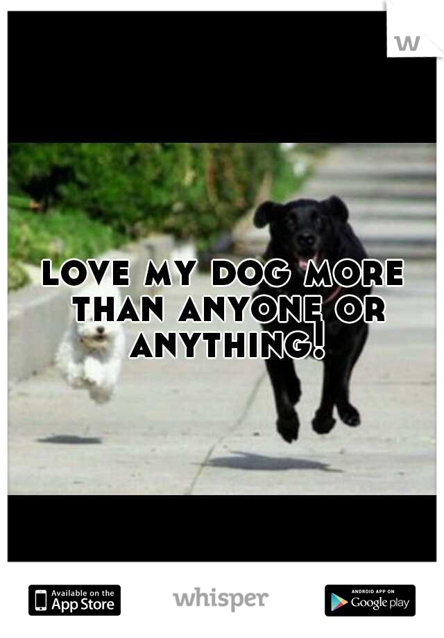 love my dog more than anyone or anything!