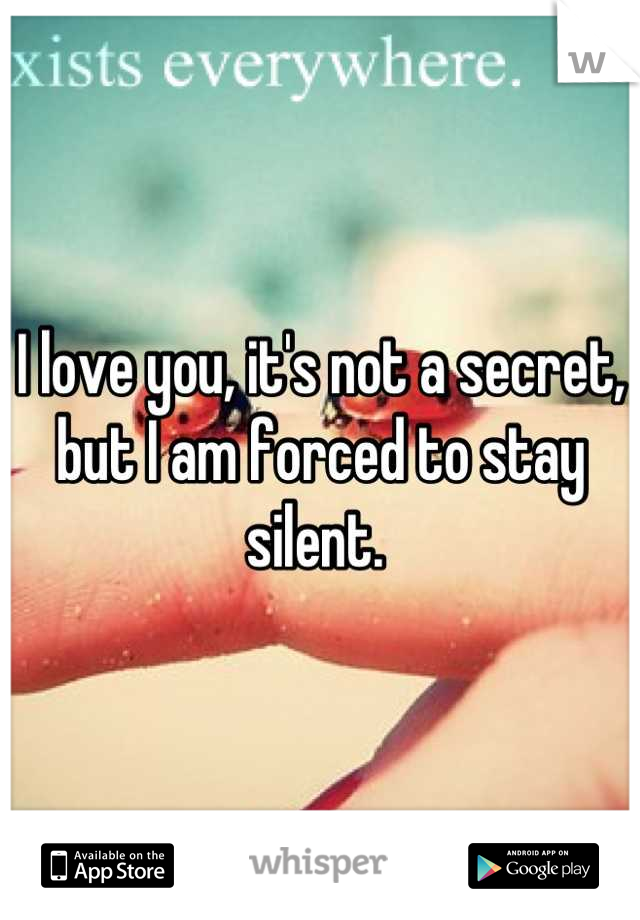 I love you, it's not a secret, but I am forced to stay silent.