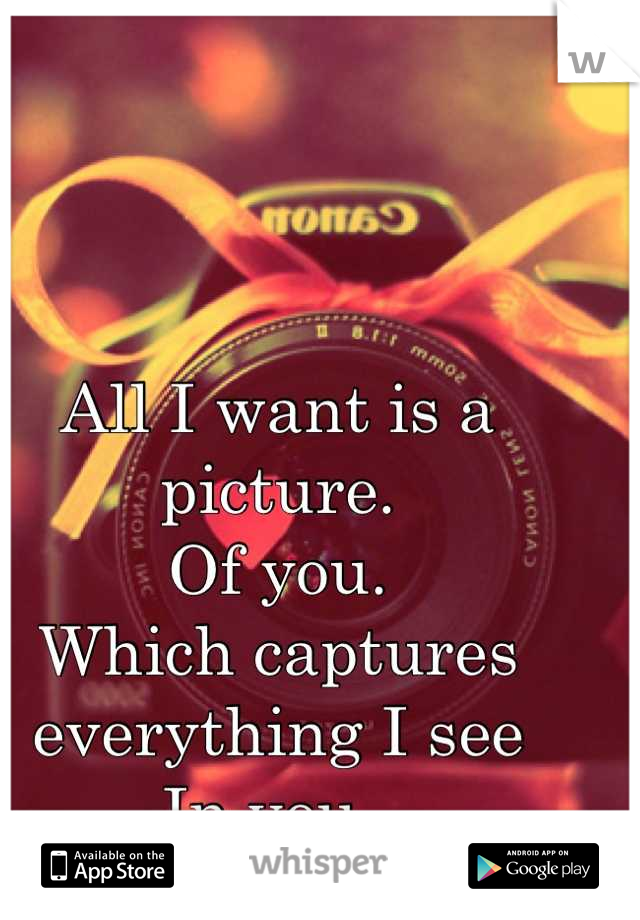 All I want is a picture. Of you.  Which captures everything I see  In you.